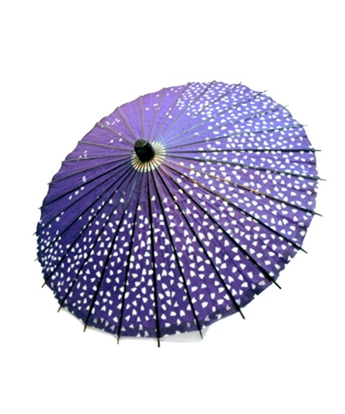 Ombrelli Wagasa (4)